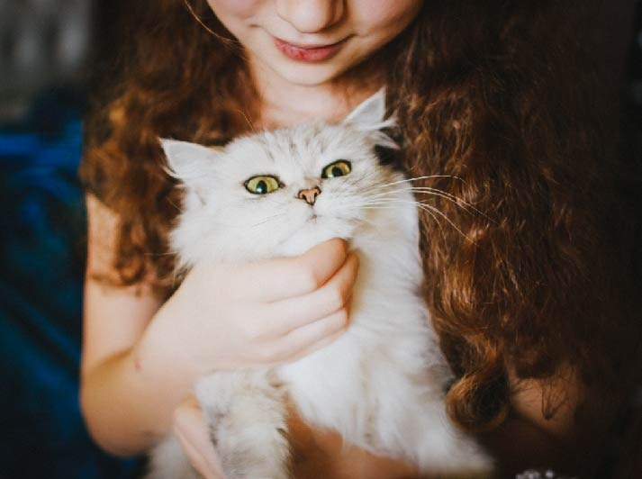 a girl holding a white cat and smiling